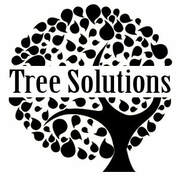 Best Tree Service Scarborough